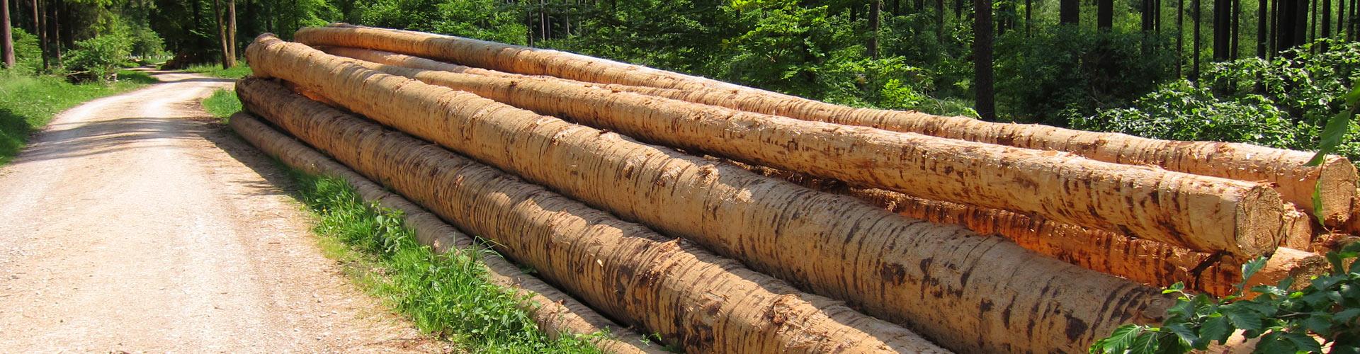 Holzverkauf Fbg